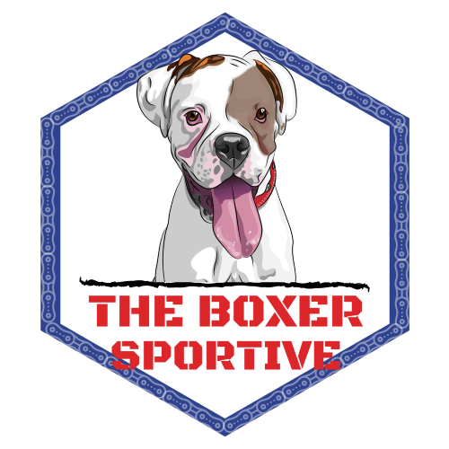 """""""The Boxer"""" 66 mile south lakes sportive"""
